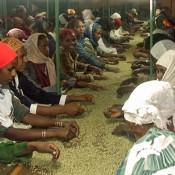 Sortierung der Kaffeebohnen von Hand